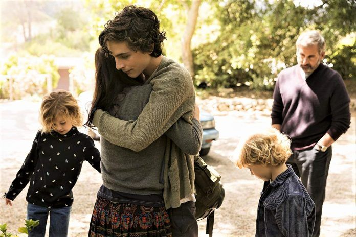 Frame from movie Beautiful Boy (2018)
